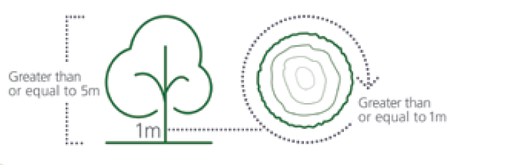 diagram of protected tree sizes