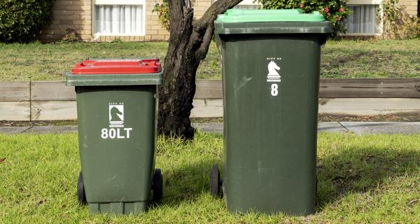 Images of bins out for collection