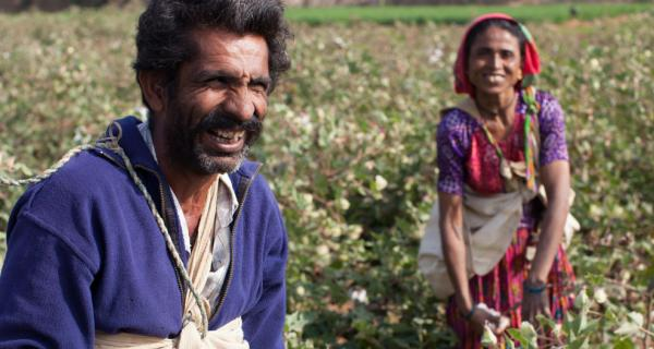Picture of cotton farmers in India