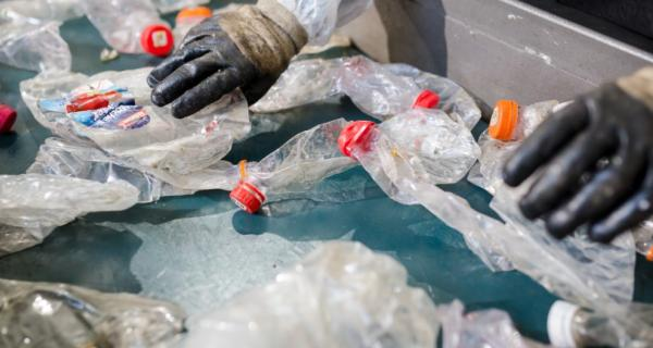 Image of recycling being sorted