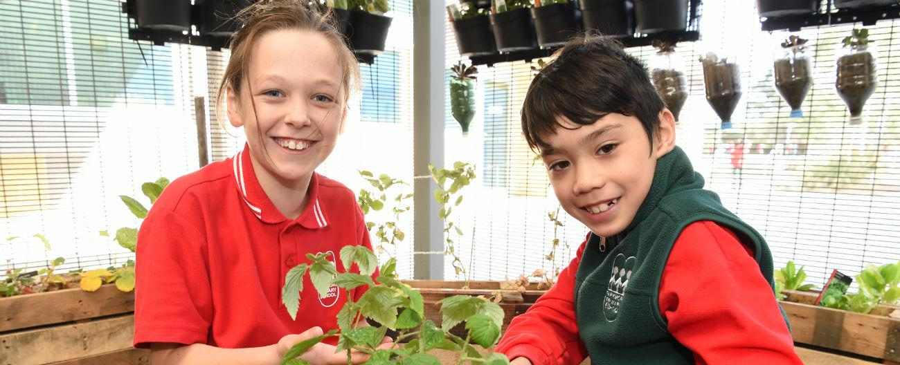 Picture of students with plants